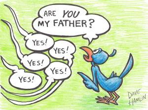BIRD-KID