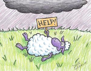 Sheep-tipping